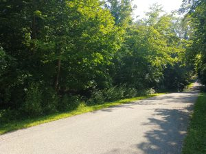 Featured image of property at TBD Miller Rd. Lafontaine, IN 46940